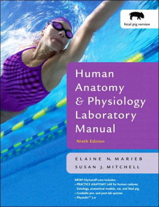 anatomy and physiology lab manual 10th edition