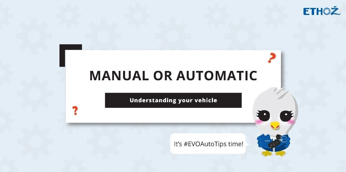 automatic license driving manual car