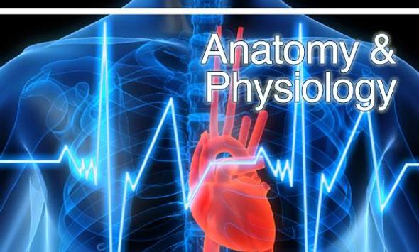 human anatomy and physiology lab manual free download